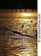 Sea golden light from sun sets - Fishing equipment Many of...
