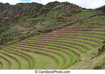 Inca settlement, Pisac, Peru Terraced fields in the Inca...