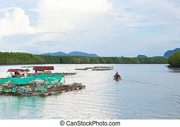 Coop fish of thailand sea - The coop for feeding fish in...