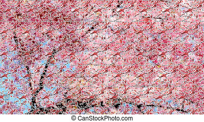 Seamless pattern of pink Sakura blossom on a white...