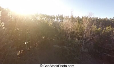 Aerial footage of camera rises above the sunset trees.