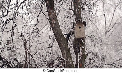 Birdhouse in Winter Forest
