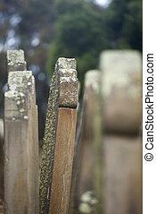 Isle of Deads Port Arthur Tasmania - Historic Graveyard Isle...