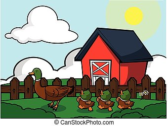 Duck at farm house scenery