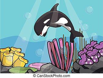Orca underwater scenery
