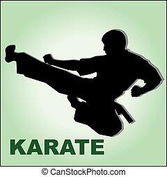 kickboxing karate fighter high kick - kickboxing karate...