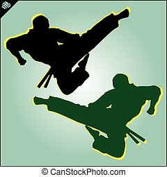 karate kyokushin fighter jump kick