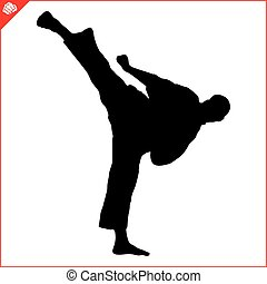 karate kyokushin fighter high kick
