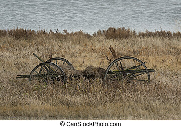 Old Wagon - An old wagon left to rot on the prairie in North...