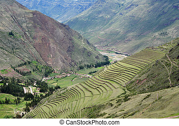 Inca settlement, Pisac, Peru. Terraced fields in the Inca...