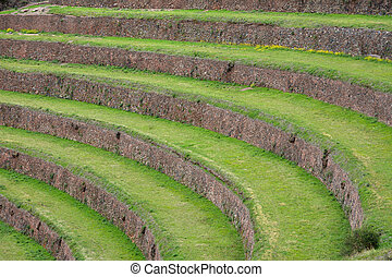 Terraced fields in the Inca archeological area of Pisac, Peru.