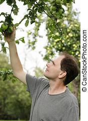 Man working in a garden