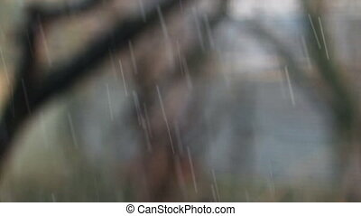 Strong Summer Rain