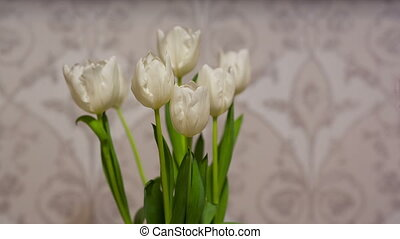White Tulips at home - a bouquet of white tulips