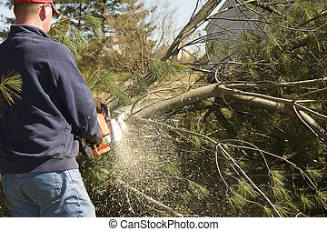 Chips Flying Chainsaw - Chips flying while man cuts pine...