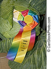 Award Winning Cabbage - Brightly colored rosette adorns...