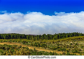 Landscape on Tenerife Island in Spain - Landscape with Blue...