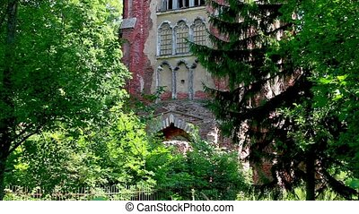 Ruins of an old castle - Ruins in a thicket of of the old...
