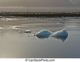 Global Warming - Icebergs from the San Rafael Glacier in...
