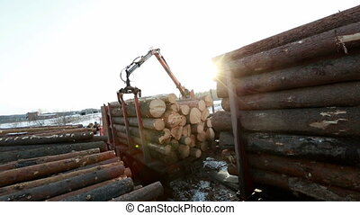 View of worker using crane unloads logs from truck - View of...