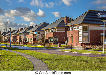 Detached family houses in a suburban street - Detached dutch...