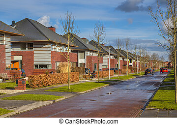 Dutch family houses in a suburban street - Detached family...