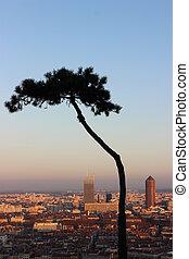 The Beautiful City of Lyon