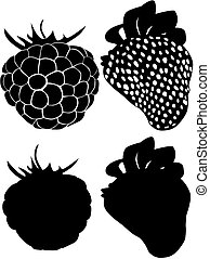 collection of Black strawberries and black raspberries - On...