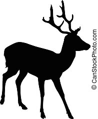 Elk Deer Silhouette - A silhouette of a young male elk