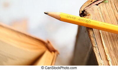 text: Study Abroad - Study Abroad - inscription in pencil,...