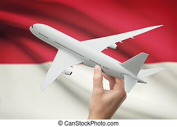 Airplane in hand with flag on background - Monaco - Airplane...