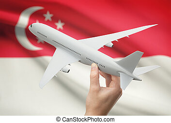 Airplane in hand with flag on background - Singapore -...