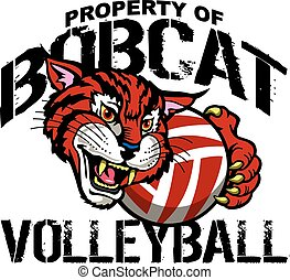 bobcat volleyball - property of bobcat volleyball team...