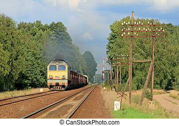 Freight train passing the forest - Freight train hauled by...