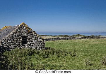 Welsh cattle barn