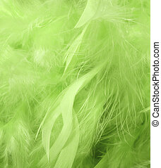 Green feathers - Background with green feathers - macro...