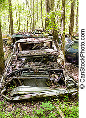 Smashed Car in Woods
