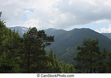 Rila mountain - General view of Borovets resort in Rila...