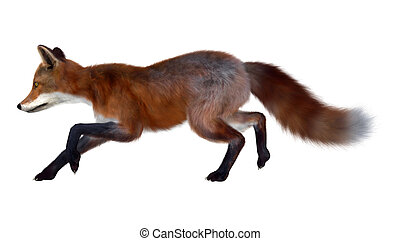 Red Fox Running - 3D digital render of a red fox running...