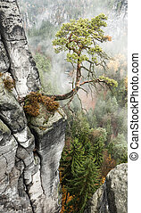 Bastei at Saxon Switzerland, Germany - Bastei at Saxon...