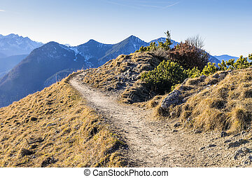 Path in Bavarian Alps - Path on mountain Jochberg in the...