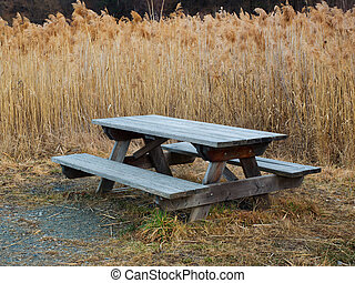 Outdoor public wooden pic nic table surrounded by tall reeds...