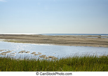 Cape Cod empty beach - Tidal flats exposed on Cape Cod Bay