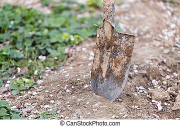 spade in the garden
