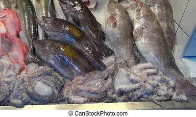 Various fish in the market - Various fresh red and gray fish...
