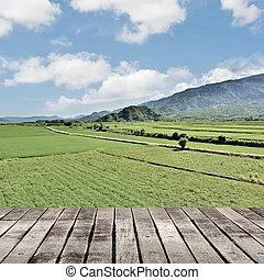 paisaje, Plano de fondo, naturaleza