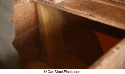 cornmeal in a mill - corn flour at the mill closeup