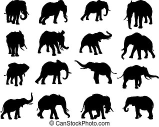 Elephant Silhouettes - A set of elephants in silhouette in...