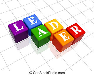 leader in colour  - 3d colour boxes with text - leader, word