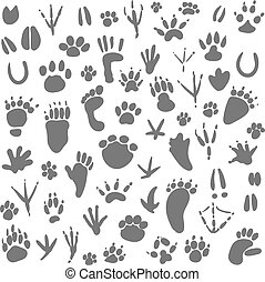 Traces of animals. Vector illustration. Isolated on white...